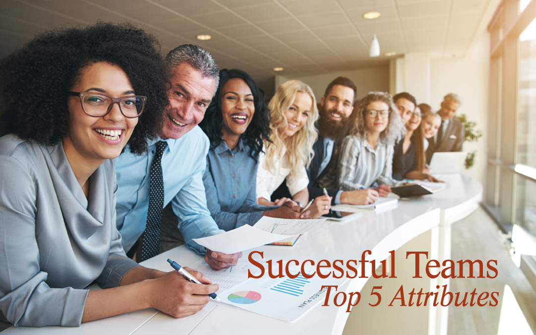 Successful Teams: My Top 5 Attributes